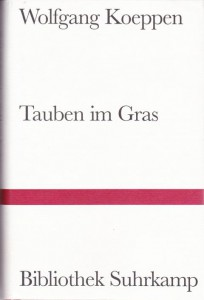 K640_Tauben_im_Gras